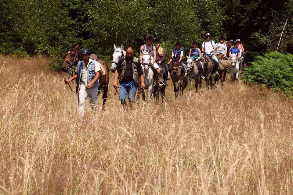 Horse riding tour by 7cai
